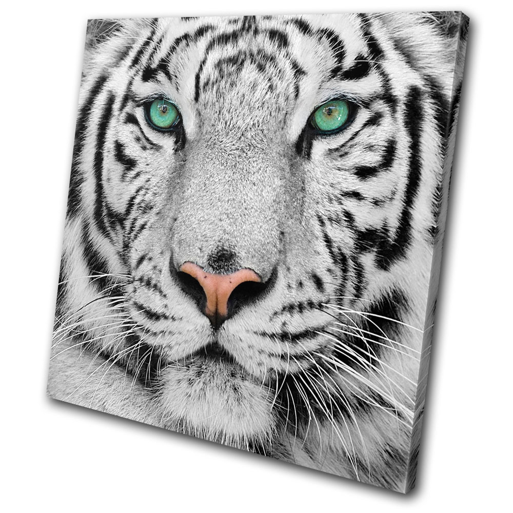 Animals-Siberian-Tiger-Eye-SINGLE-CANVAS-WALL-ART-Picture-Print-VA