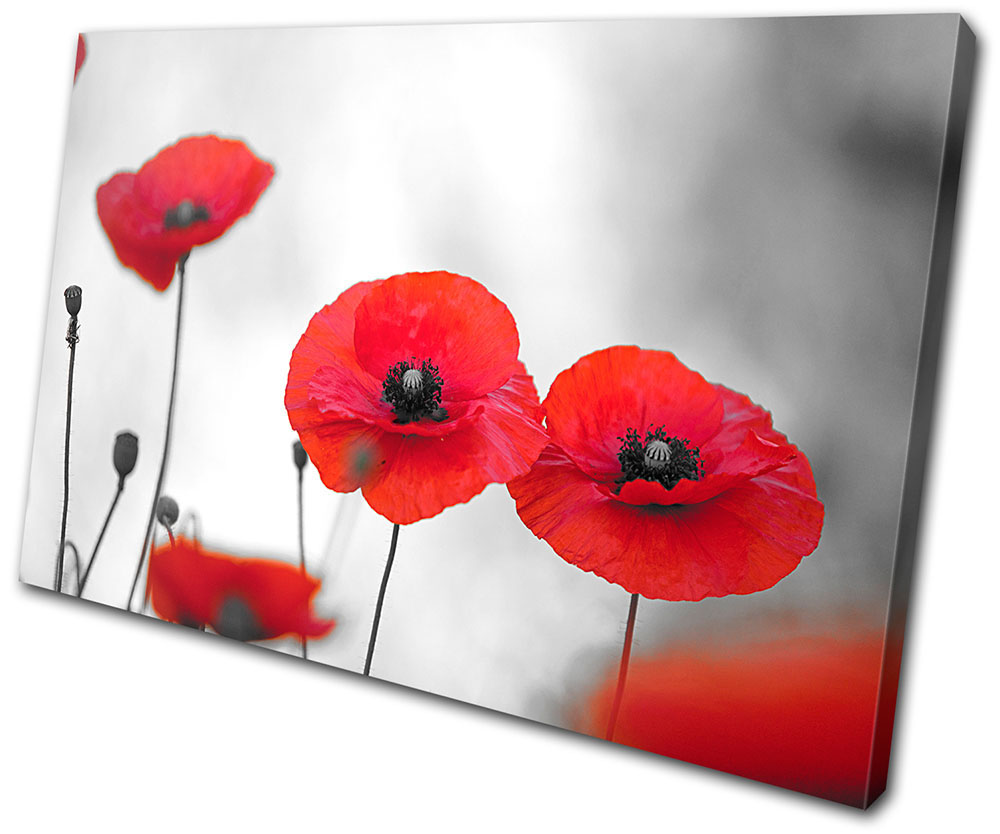 Poppy Field Flowers Floral SINGLE CANVAS WALL ART Picture Print VA