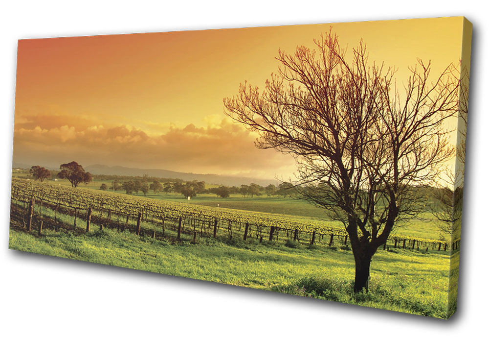 Landscapes Field Sunrise MULTI CANVAS WALL ART Picture Print VA